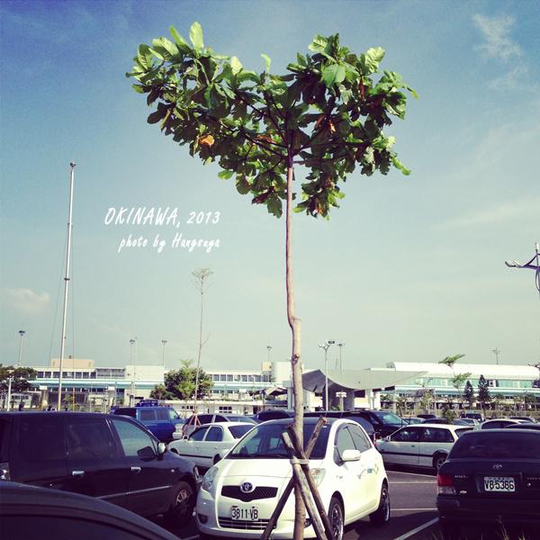 沖繩那霸:: 旅行就是要努力地奮戰到最後一分一秒