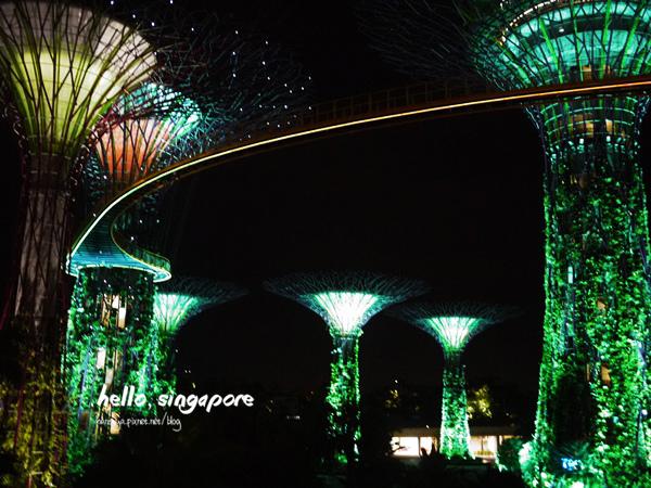 新加坡│濱海灣花園 Gardens by the Bay::歡迎走入魔幻世界