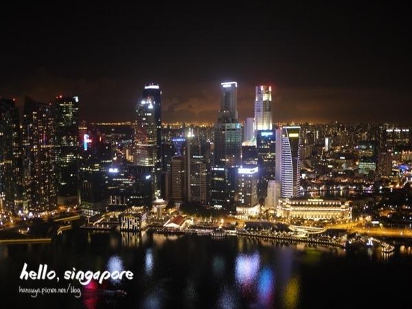 新加坡│金沙酒店空中花園觀景台 Skypark:: 去不到無邊際游泳池,也要來登高看夜景