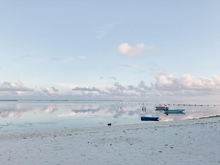 馬爾地夫|自助旅行好選擇 Maafushi居民島 以及一些需注意事項